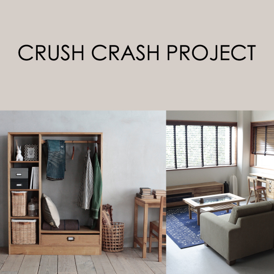 CRUSH CRASH PROJECT